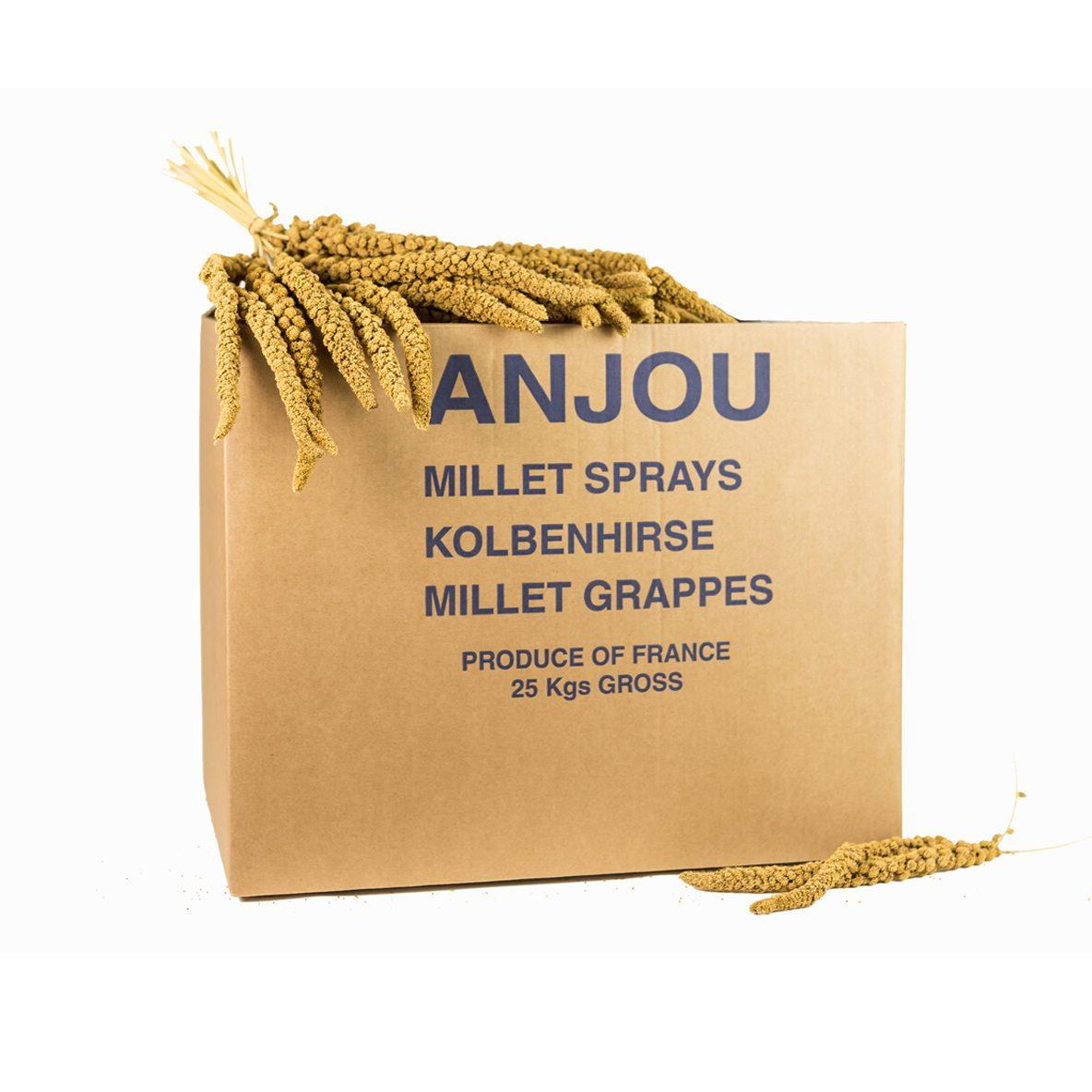 Carton millet jaune 25kg Moreau millet